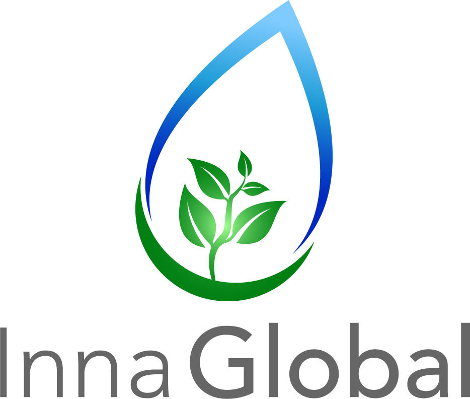 logotipo de Inna Global