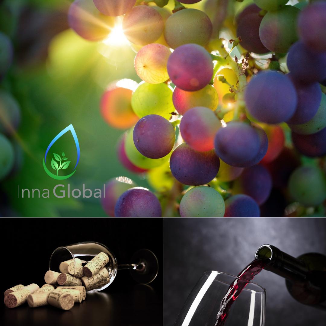 Ozono: por qué es el mejor amigo de la industria vitivinícola